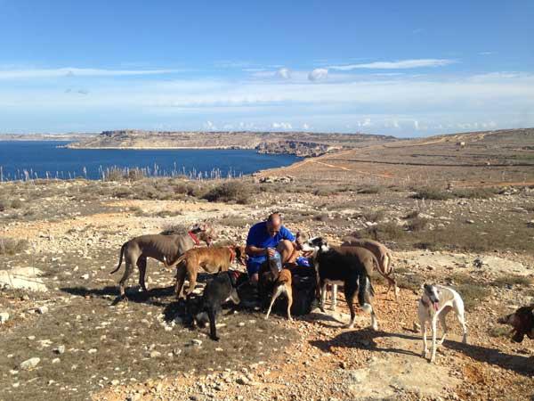 dog walking service algarve